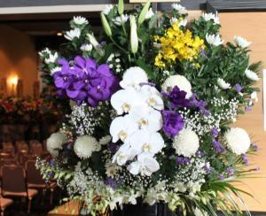 ◆ 白と紫野お花 ◆